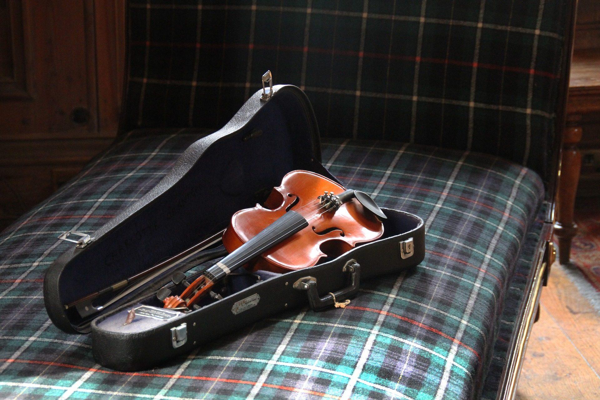 ヴァイオリン, 計測器, 文字列, ケース, カバー - HD の壁紙 - 教授-falken.com