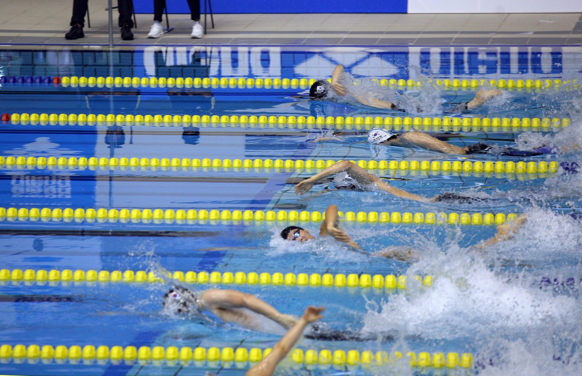 Fondo de pantalla de competici n piscina nataci n for Piscina de natacion