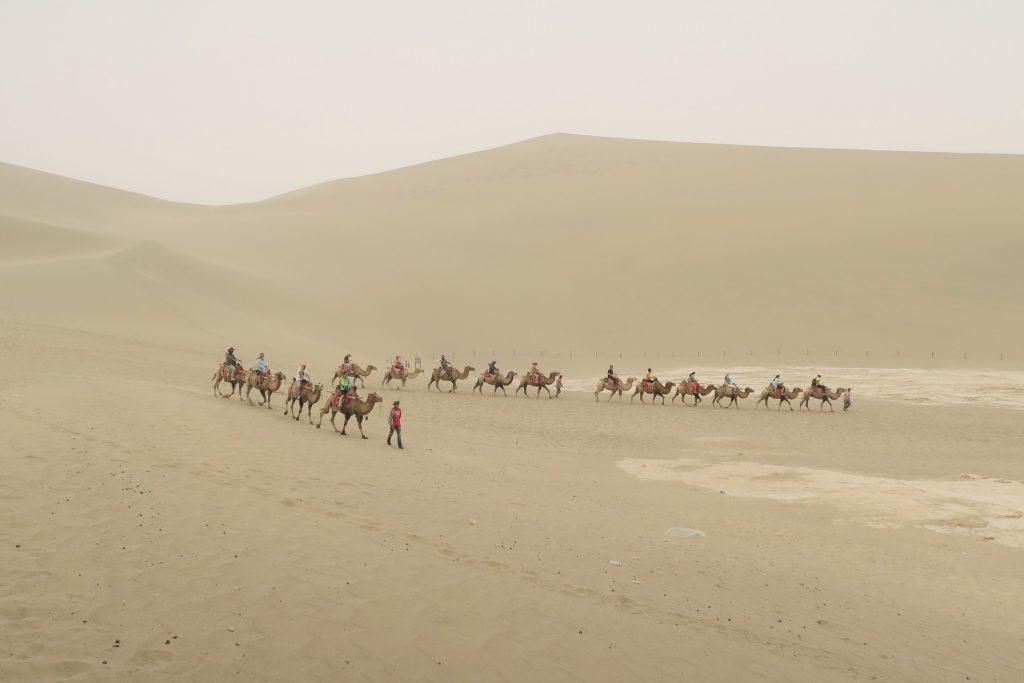 沙漠, 沙丘, 沙子, 骆驼, 商队, 旅游, 1803211658