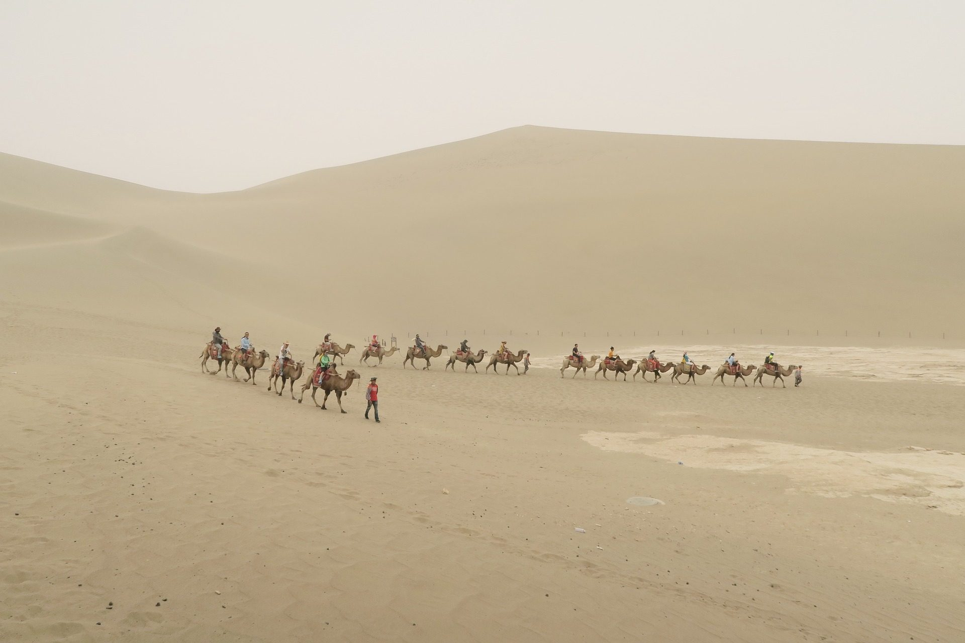 沙漠, 沙丘, 沙子, 骆驼, 商队, 旅游 - 高清壁纸 - 教授-falken.com