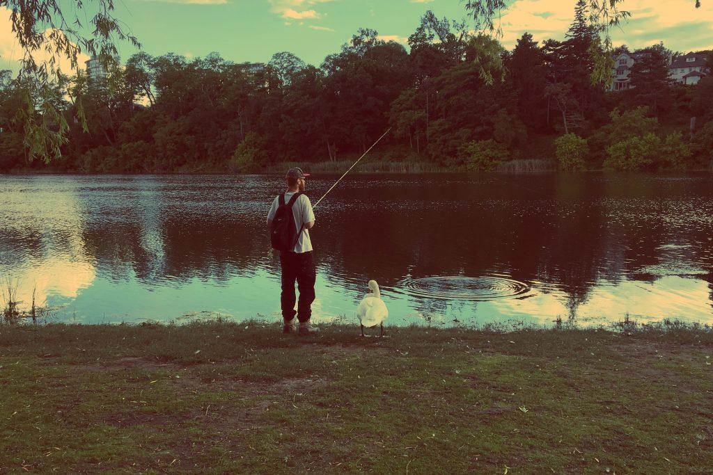 hombre, lago, río, pesca, pato, árboles, 1803241712