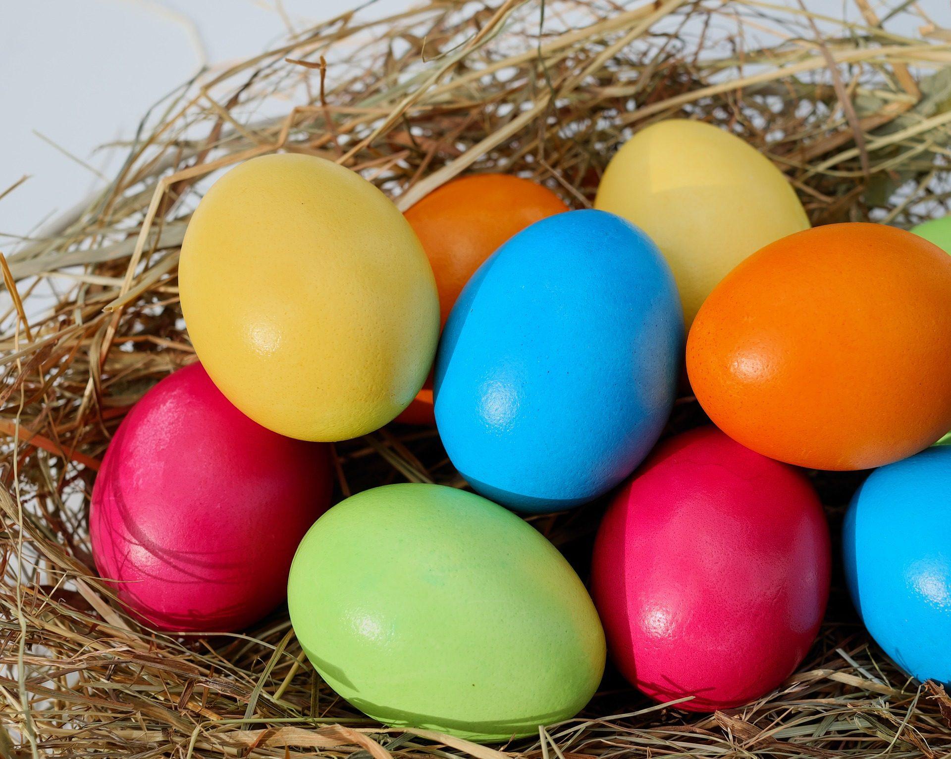 鸡蛋, 复活节, 多彩, 巢, 画 - 高清壁纸 - 教授-falken.com