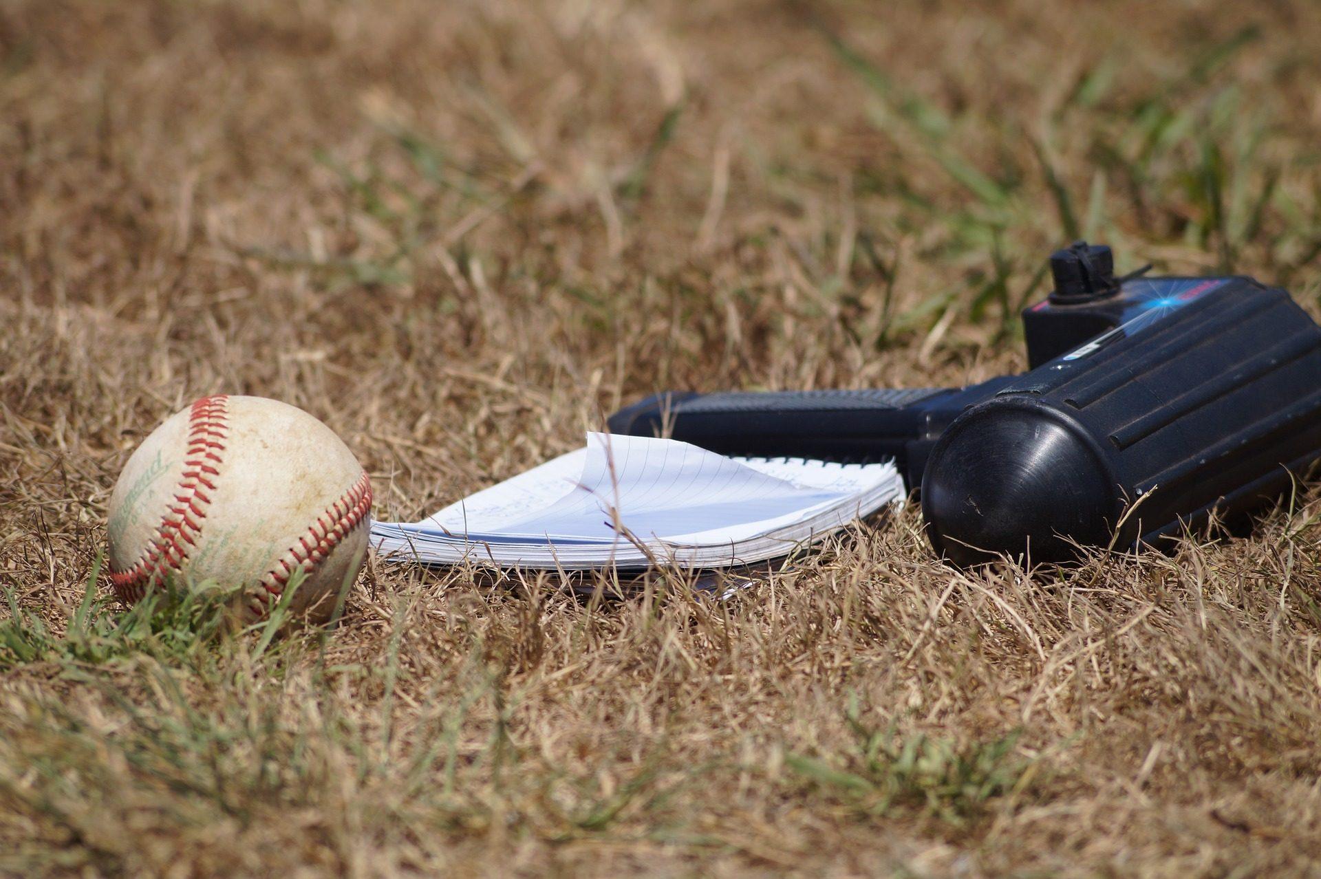 pelota, béisbol, detector, libreta, apuntes, hierba, seca - Fondos de Pantalla HD - professor-falken.com