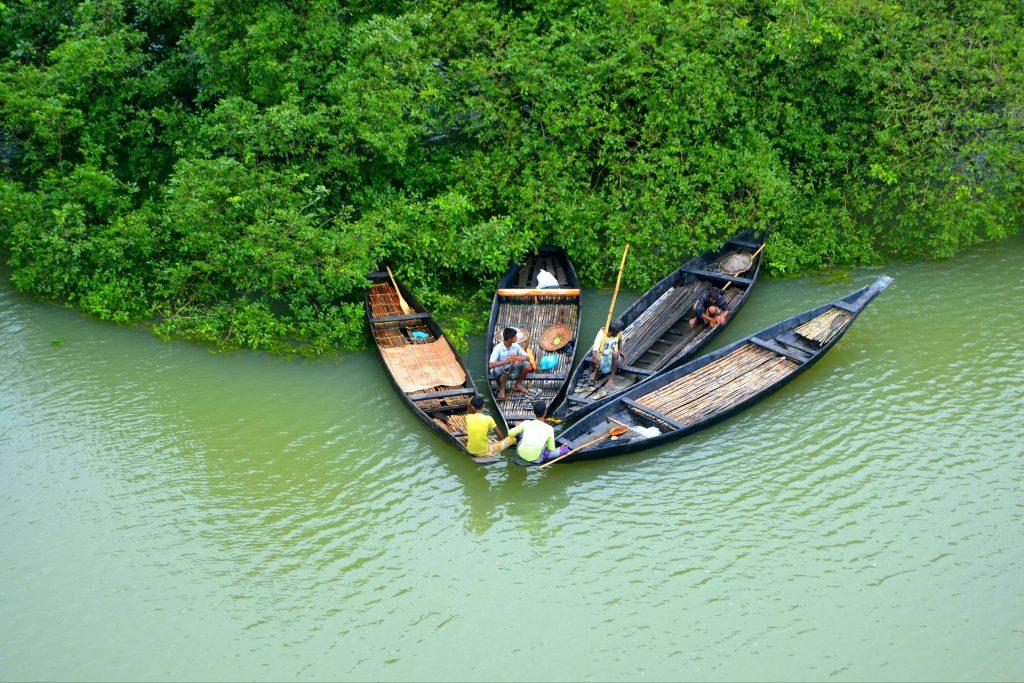 río, canoas, pescadores, vegetación, bangladesh, 1803131556
