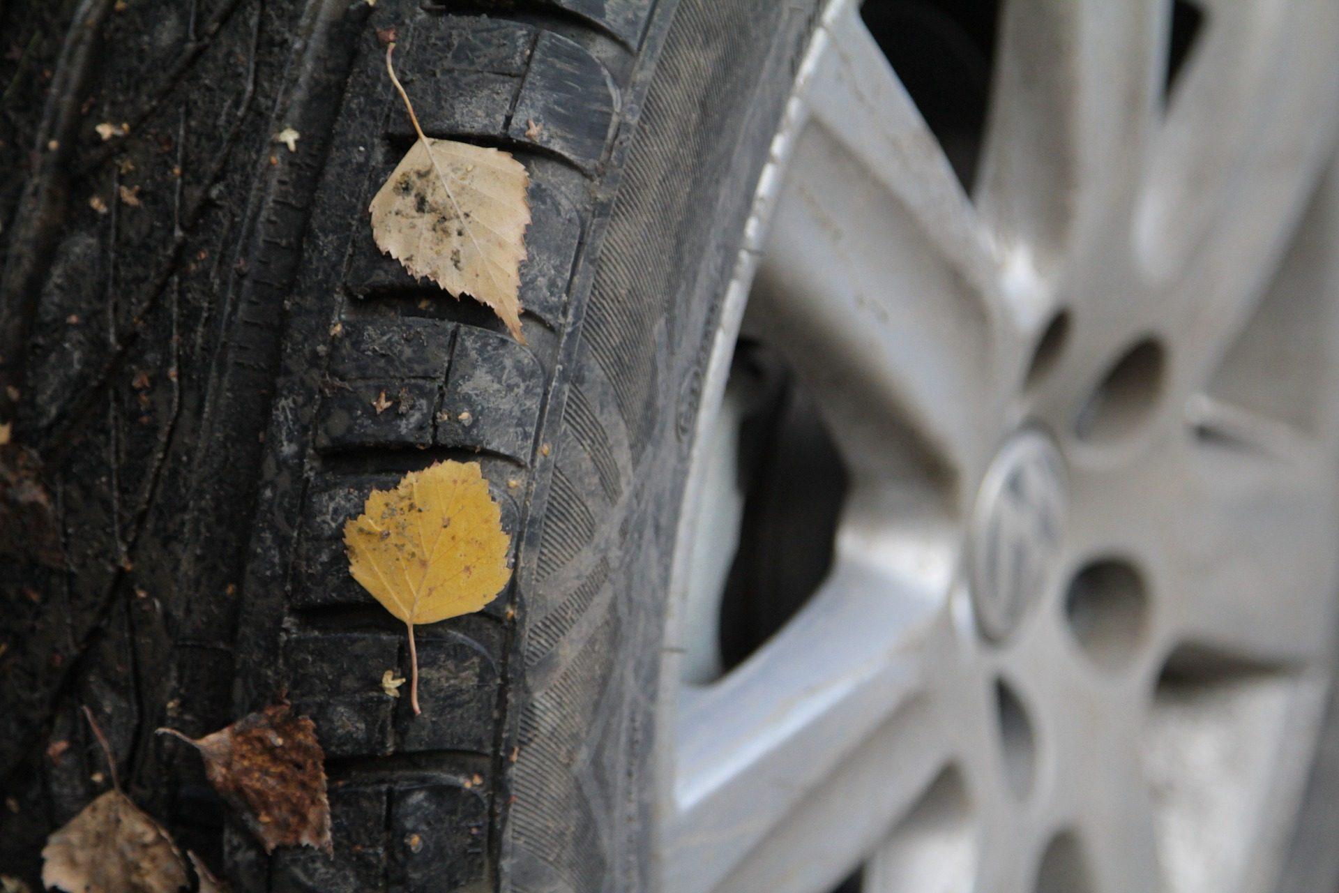 roue, pneu, goma, en caoutchouc, Metal, feuilles - Fonds d'écran HD - Professor-falken.com