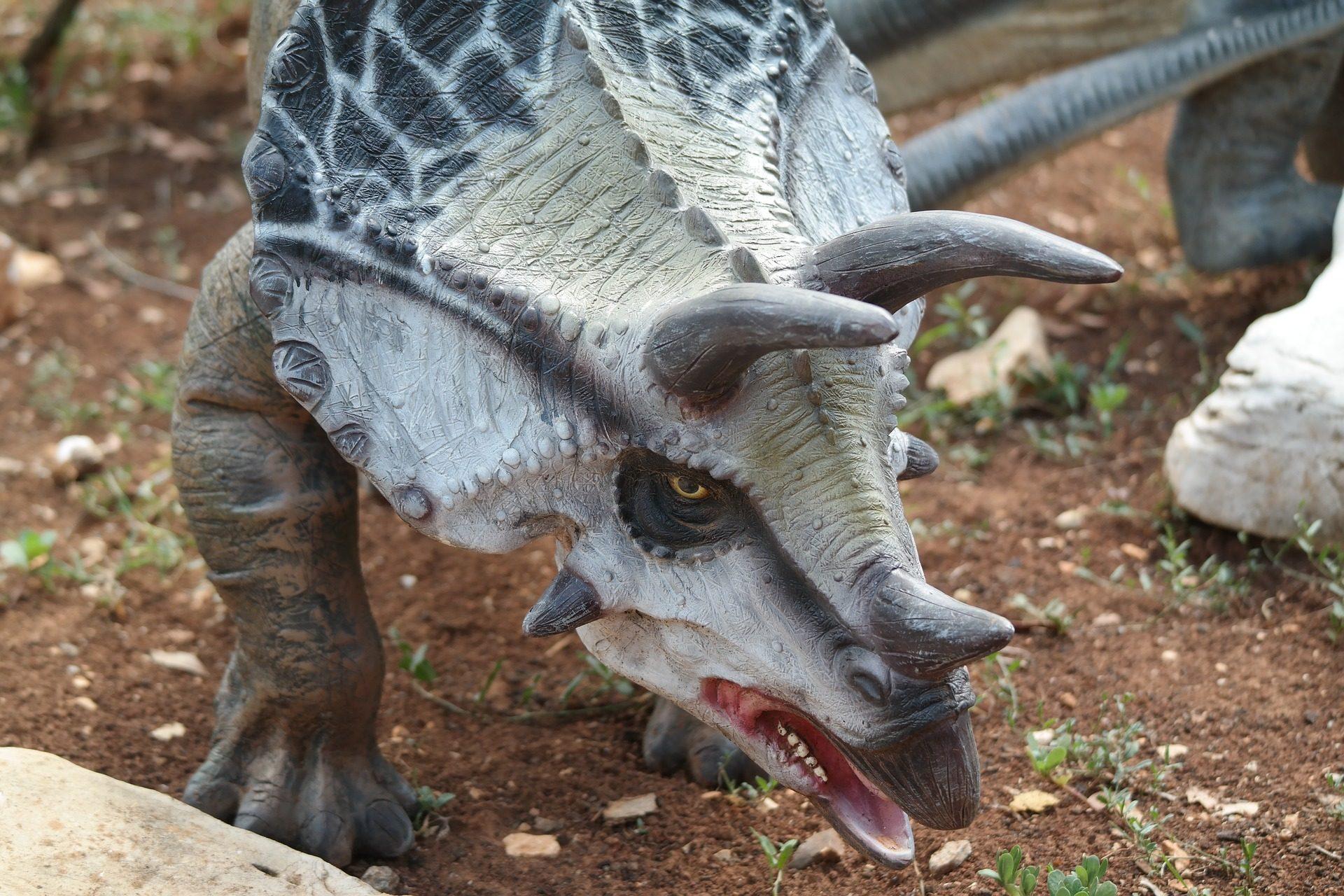 triceratops, Δεινόσαυρος, κέρατα, Παιχνίδι, Σχήμα - Wallpapers HD - Professor-falken.com