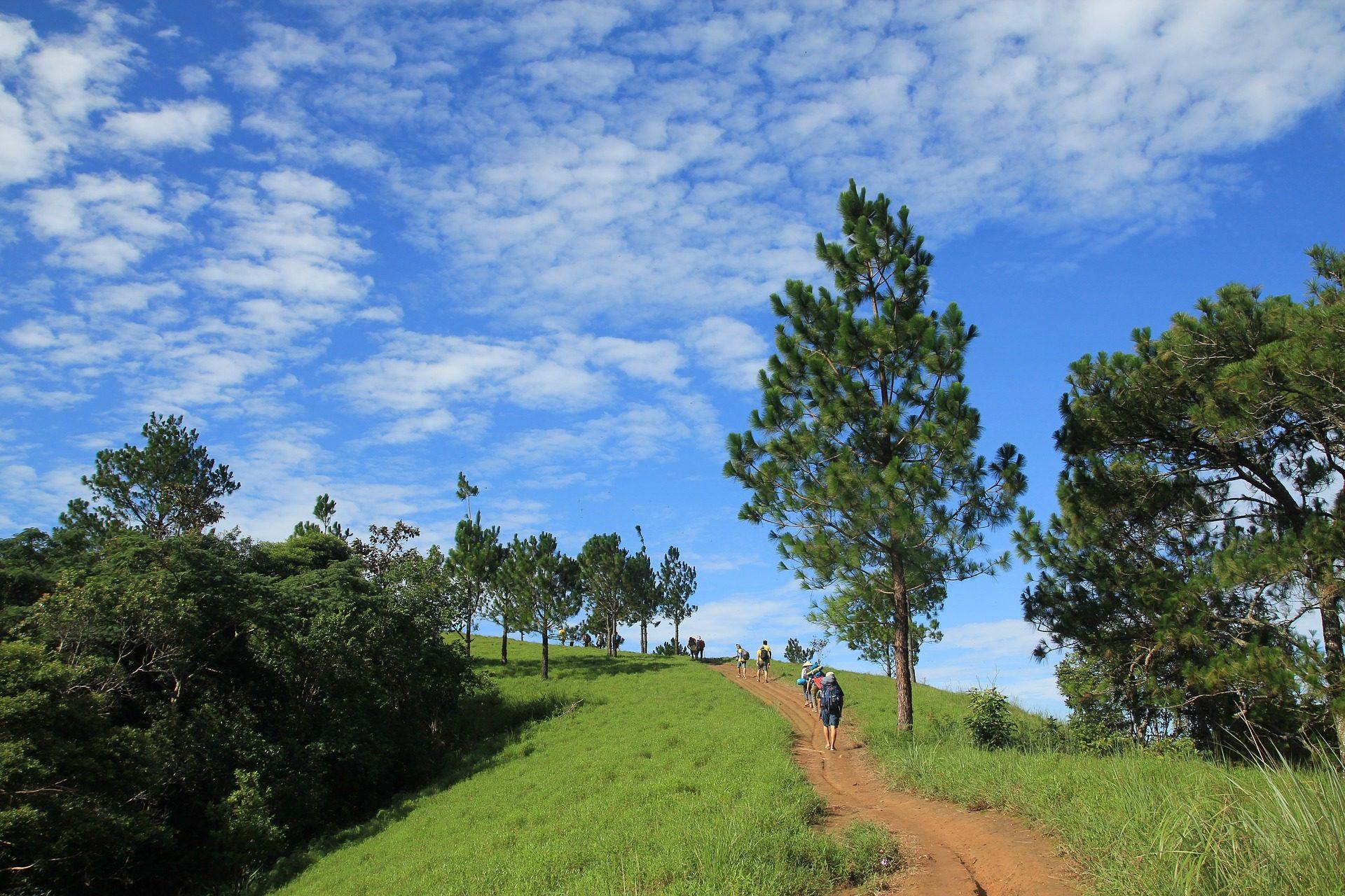 Vereda, Strada, vegetazione, camminatori, alberi, Cielo, nuvole - Sfondi HD - Professor-falken.com