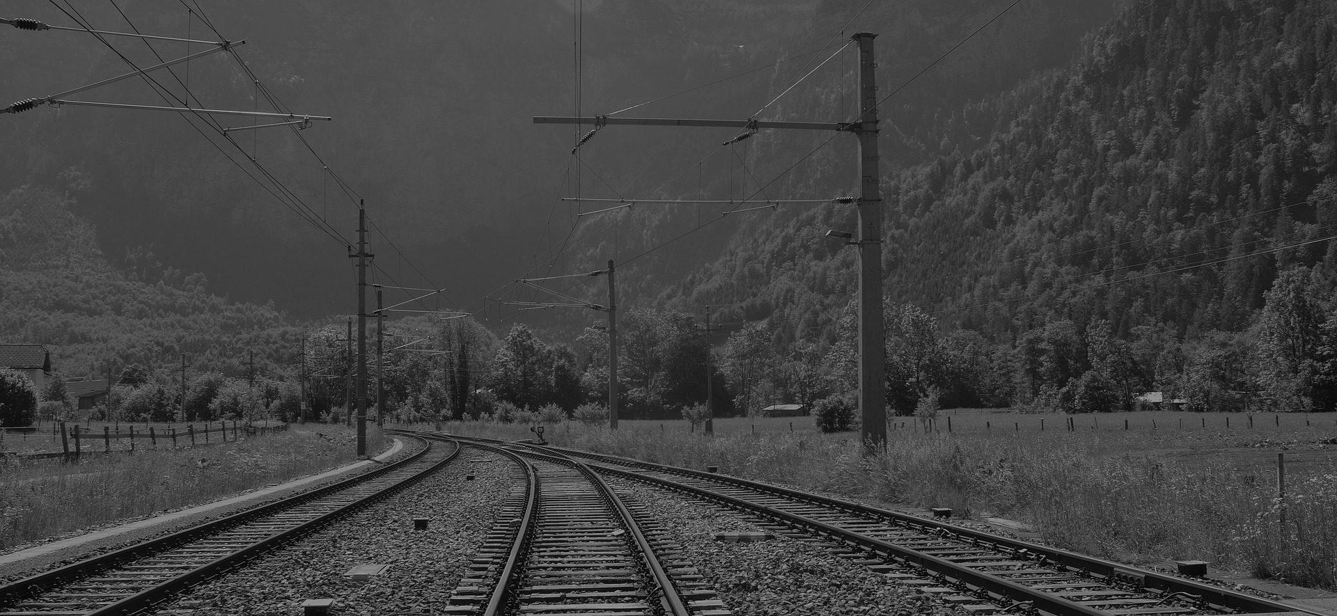 caminhos, trem, estrada de ferro, árvores, campo, em preto e branco - Papéis de parede HD - Professor-falken.com