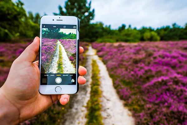6 अपने iPhone के साथ एक बेहतर गुणवत्ता तस्वीरें के लिए युक्तियां