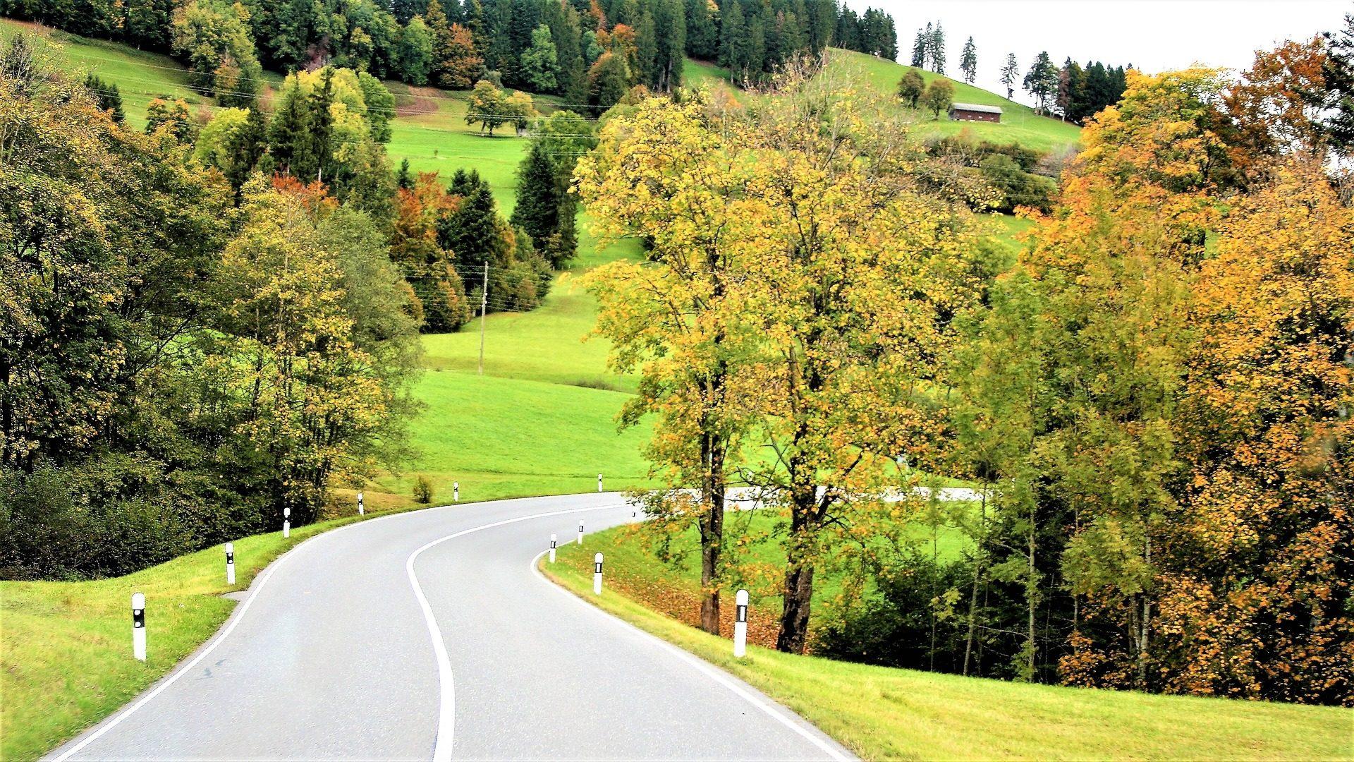 carretera, Дорога, Кривая, асфальт, деревья, поле - Обои HD - Профессор falken.com