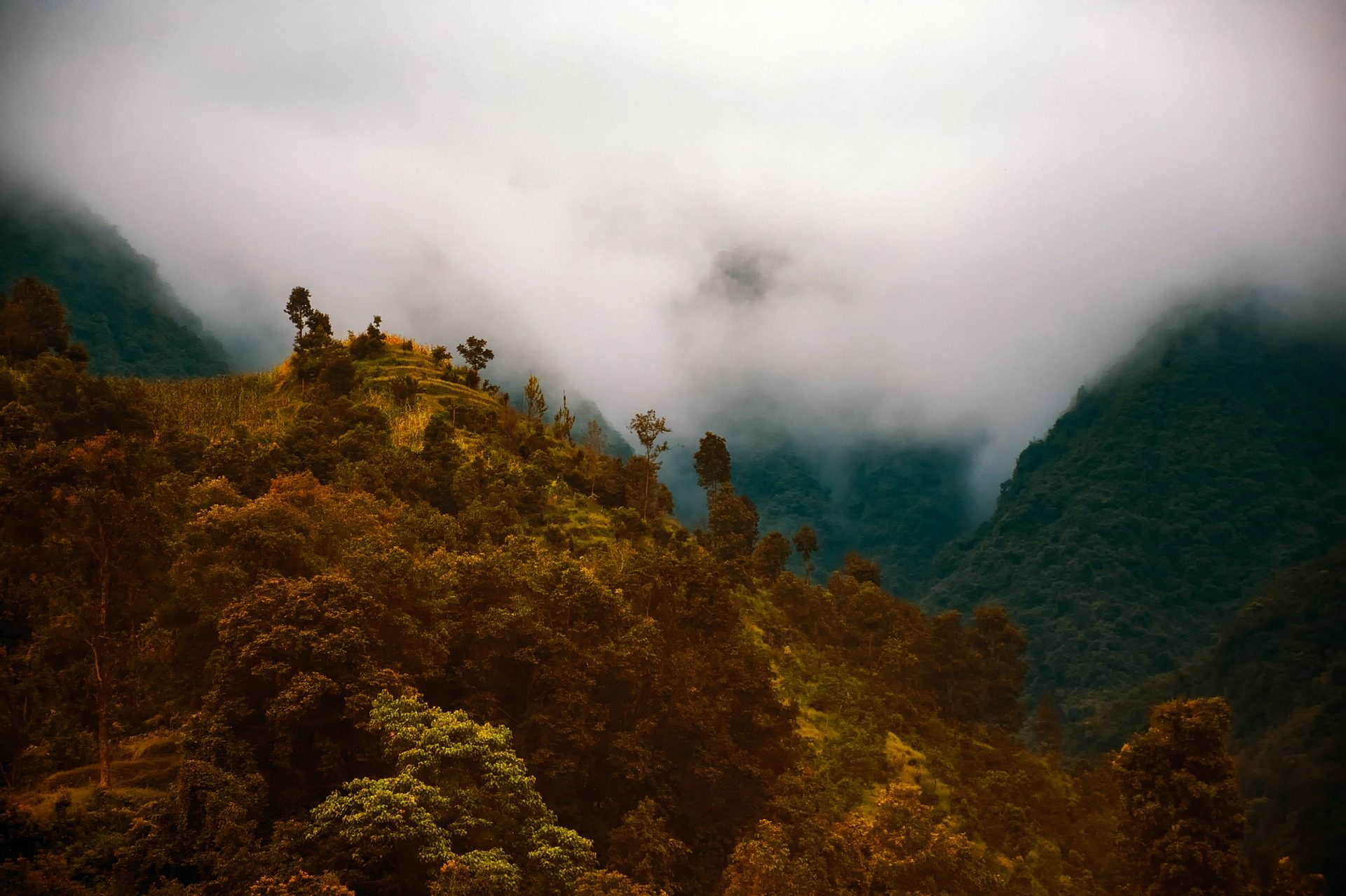 Montañas, κοιλάδες, βλάστηση, δέντρα, ομίχλη, Νεπάλ - Wallpapers HD - Professor-falken.com