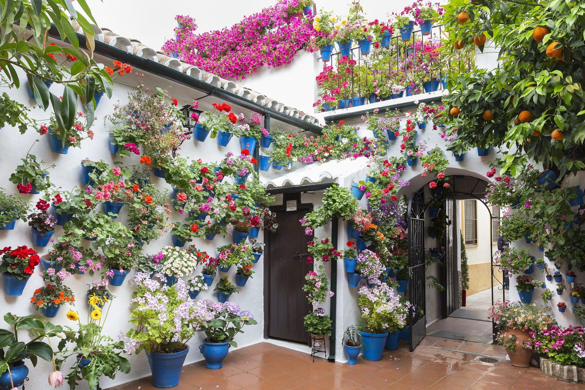 Αίθριο, Σπίτι, γλάστρες, λουλούδια, πολύχρωμο, Κόρδοβα, Ισπανία - Wallpapers HD - Professor-falken.com