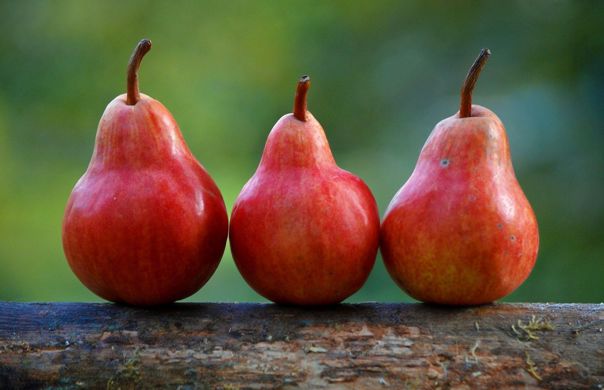 الكمثرى, الأحمر, فاكهة, صحية, النظام الغذائي - خلفيات عالية الدقة - أستاذ falken.com