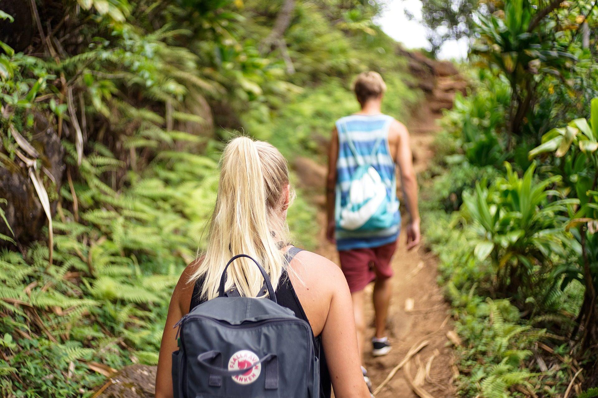 camminatori, Strada, passaggio, vegetazione, uomo, donna, Zaini - Sfondi HD - Professor-falken.com