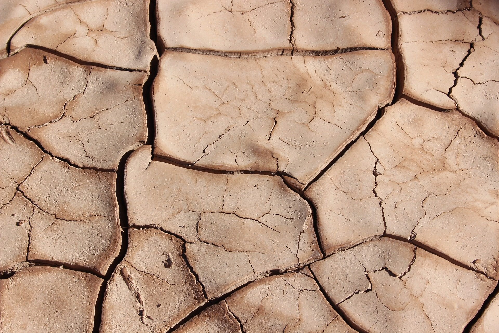 solo, quebrado, seca, Terra, rachaduras - Papéis de parede HD - Professor-falken.com