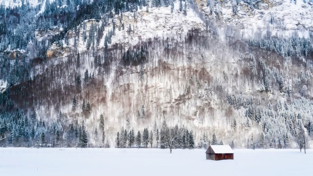 卡巴纳, 房子, 雪, 山, 树木, 孤立, 放松, 1805201617