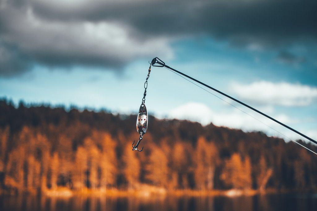 甘蔗, pescar, anzuelo, tranza, 河, 树木, 1805072012