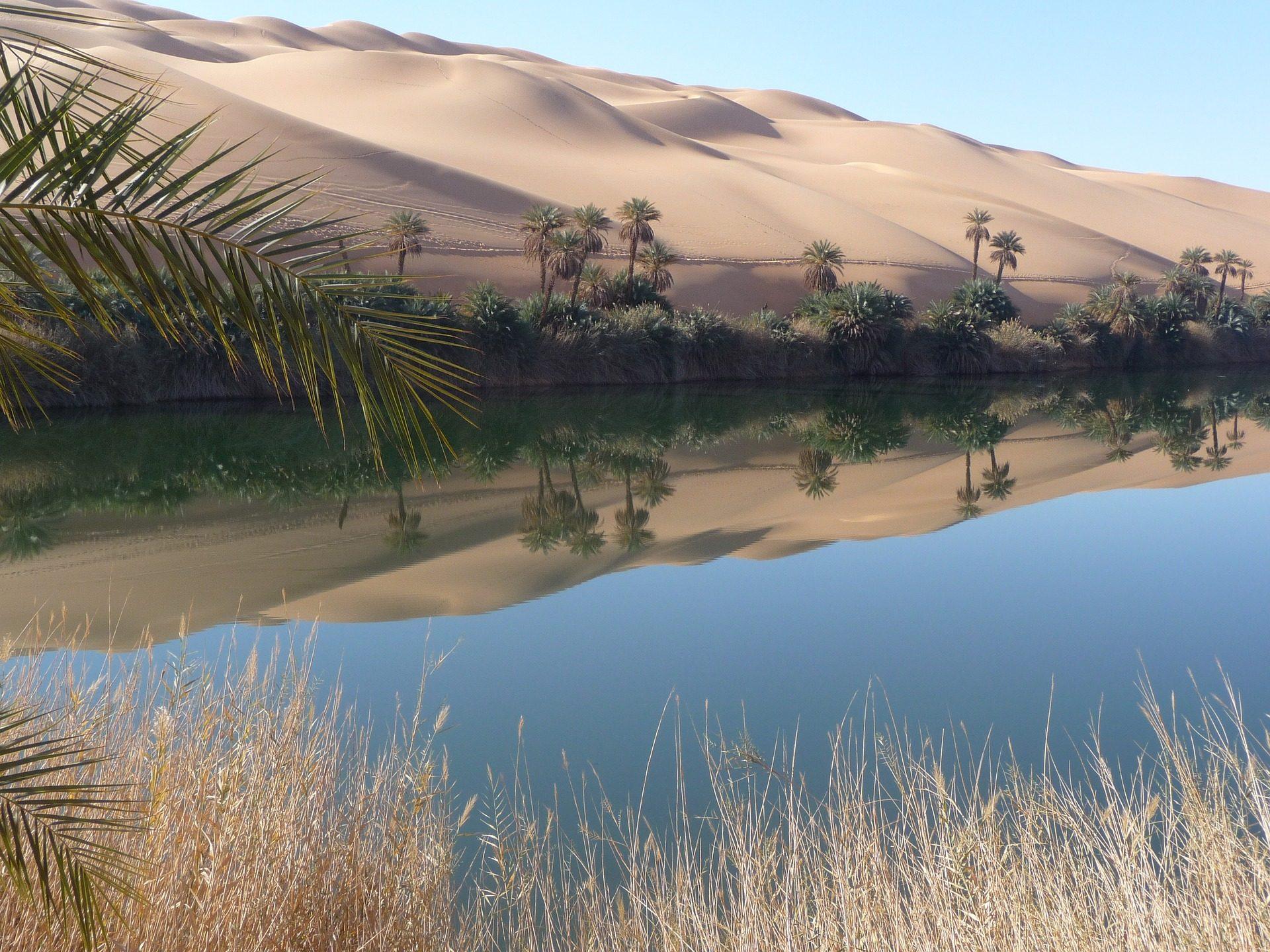 沙漠, 绿洲, 水, 棕榈树, 沙子 - 高清壁纸 - 教授-falken.com