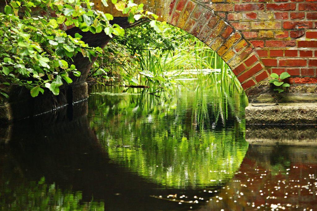 河, 水, 桥梁, 砖, 草, 植物, 1805182222