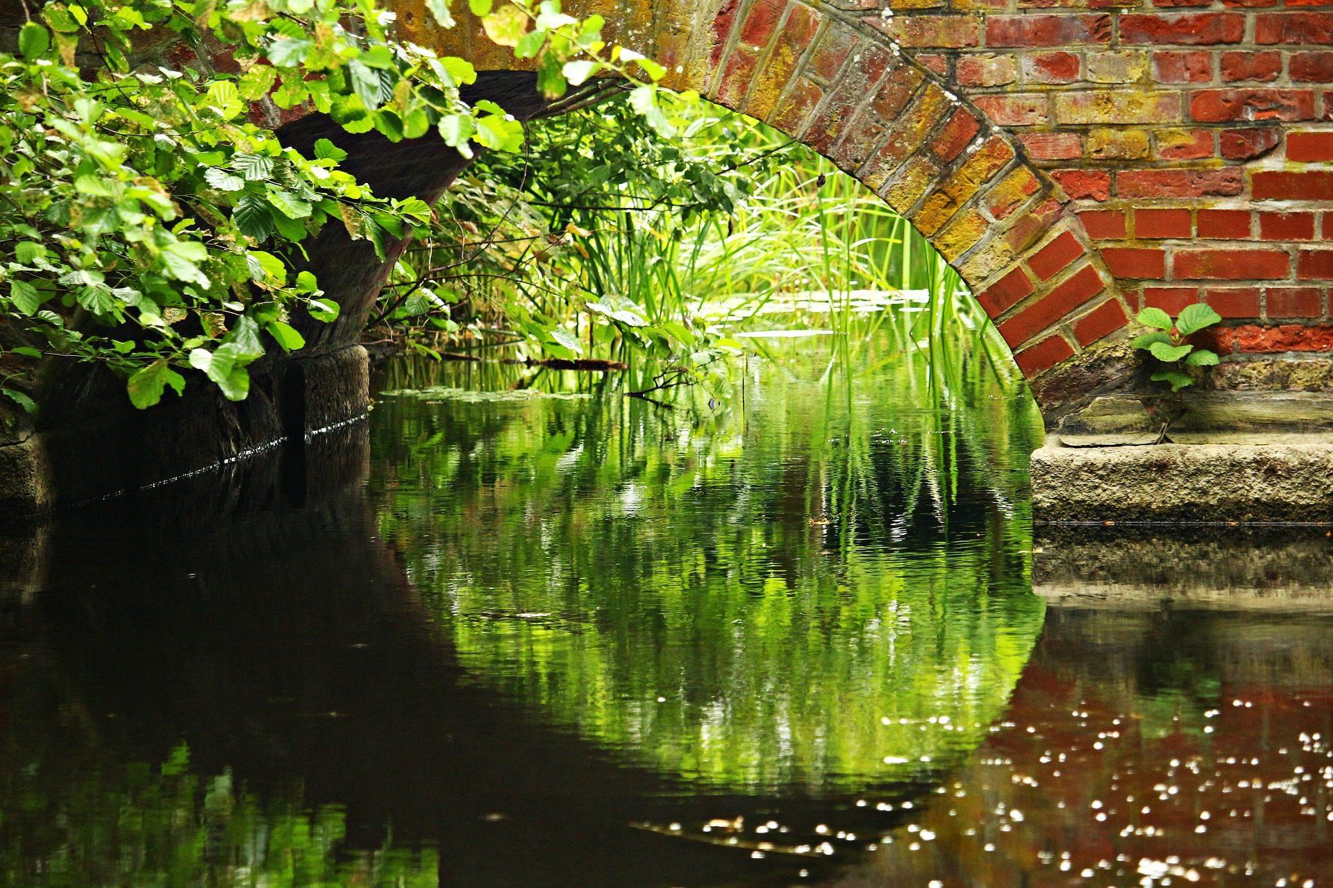 川, 水, ブリッジ, レンガ, 草, 植物 - HD の壁紙 - 教授-falken.com
